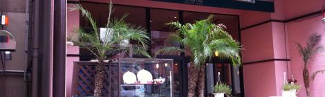 Amapola(アマポーラ)恵比寿店