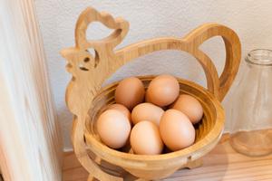 eggcellent04