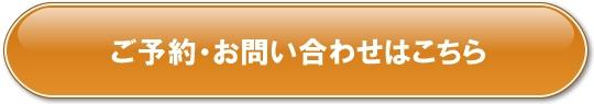 button_特大